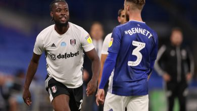 Photo of Fulham answerable for Championship play-off semi-final towards Cardiff as Josh Onomah scores gorgeous solo objective