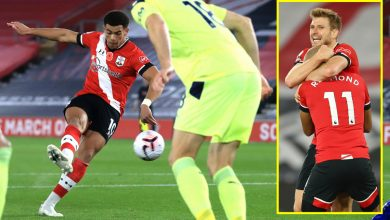 Photo of Southampton go prime of Premier League desk for first time ever with victory over Newcastle and mock US President Donald Trump by tweeting 'cease the rely'