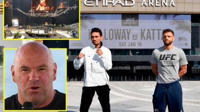 Photo of Inside UFC's Combat Island: An unique have a look at the five-star lodge housing Dana White and Conor McGregor full with F1 observe and marina, plus the model new Etihad Enviornment